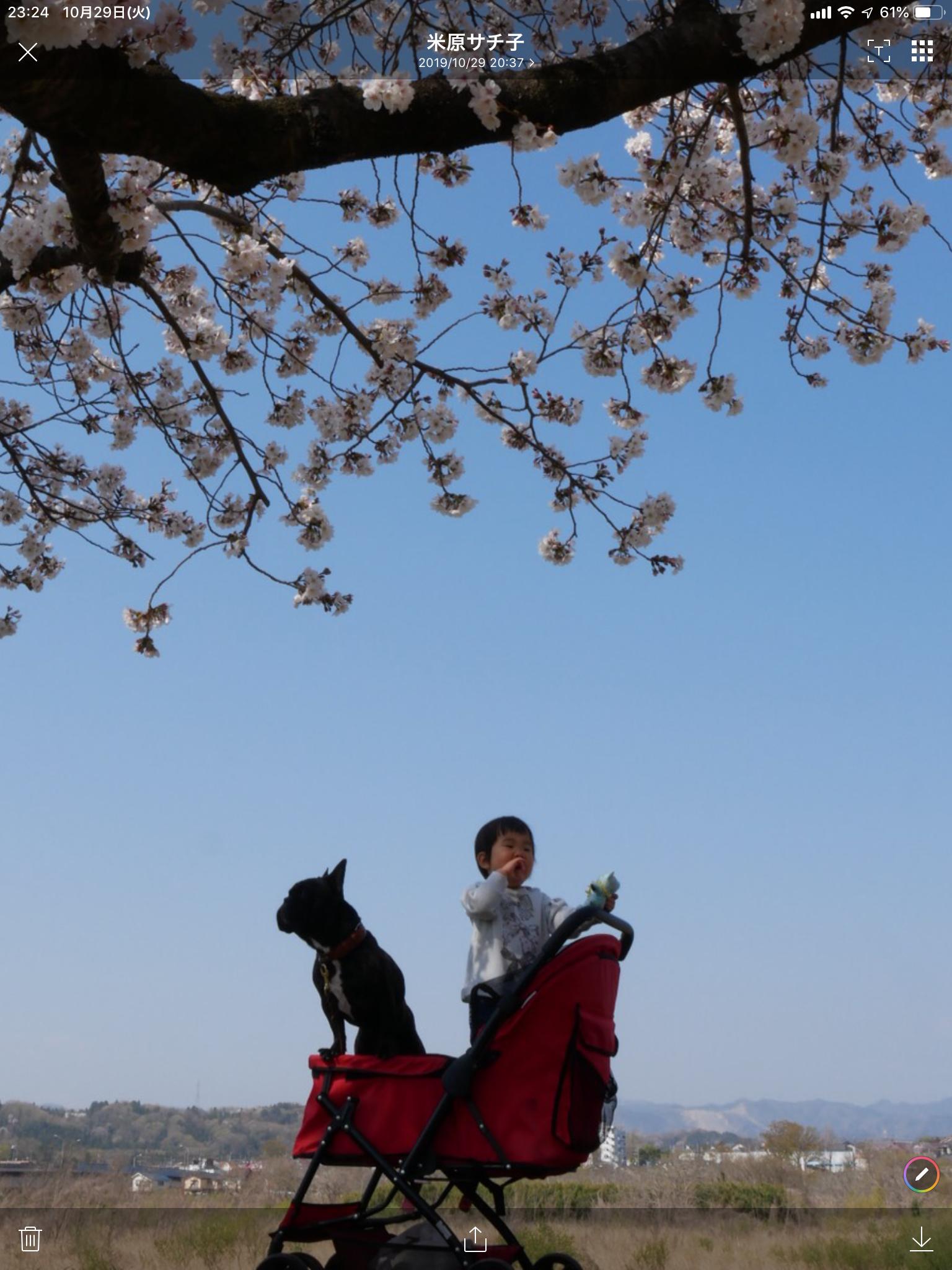 【生後 1歳 3ヶ月】卒業生A子ちゃん の歩み