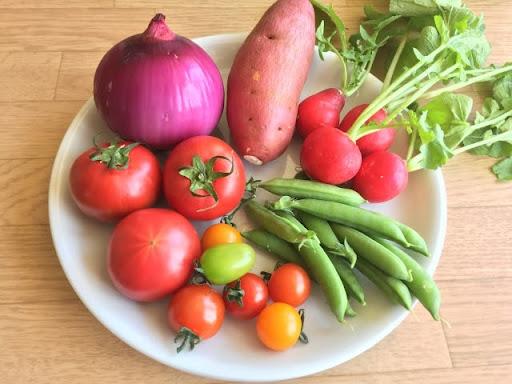 野菜の日🥬