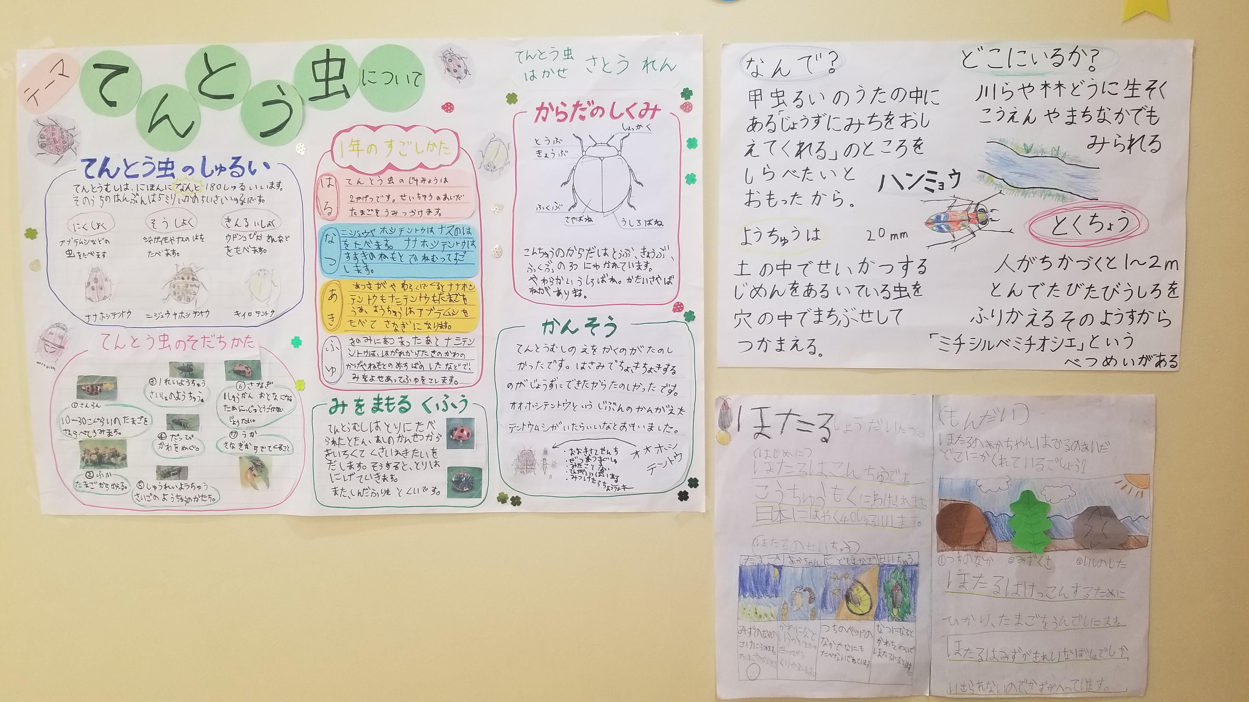 小学生の調べ学習・プレゼンテーション大会!