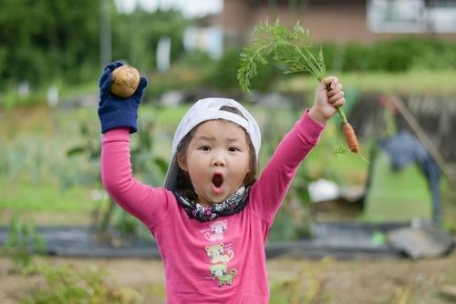 食欲の秋に「食育」を!成長に合わせた簡単な「食育」の方法とは?